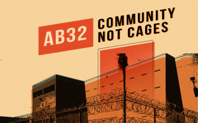 AB32 Community Not Cages Implementation Webinar